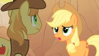 Applejack talks to Braeburn about her missing friends S1E21