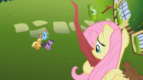 Fluttershy on a tree with squirrels S2E10