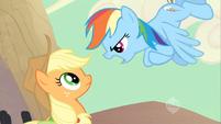 Applejack Rainbow Dash confrontation S02E14