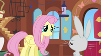 Fluttershy Ok Mr Picky Pants S2E19