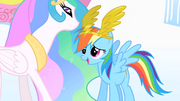 Rainbow Dash is awarded S1E16
