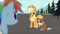 Applejack petting Winona S2E07