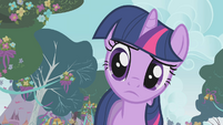 Twilight asking about the banner S1E10