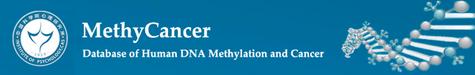 MethyCancer Image2