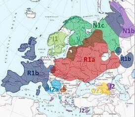 Europe Y-DNA