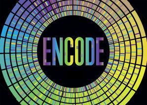 Encode graphic