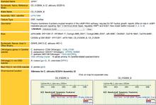 Screen Shot 2014-09-08 at 9.49.08 AM