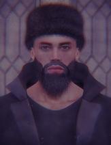 Aleksandr metel