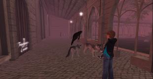 Archie Wolf Attack