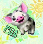 Pua Icon