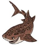 Maui-as-a-shark-ca