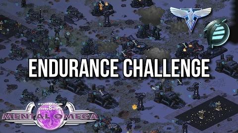 Enduring the Endurance Challenge