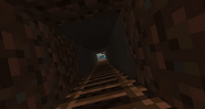 Steve in his mine