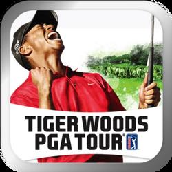 Tiger Woods PGA Tour art