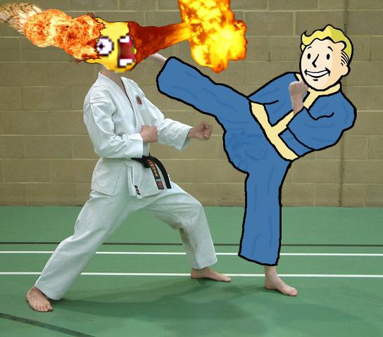 File:FOOnline-karatekickface.png