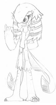 Aïsha the Gold Pheasant 2