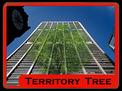 Territory Tree