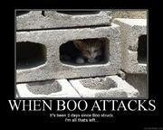 When Boo Strikes