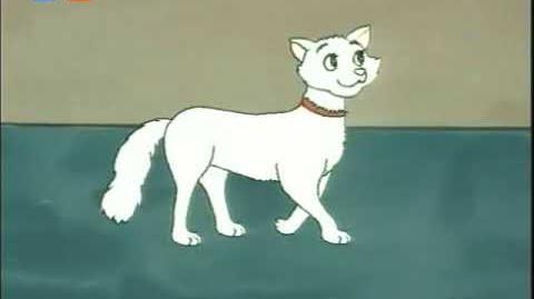 Dingo Pictures - Antiqe Katzen Greek