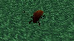 Roach-0