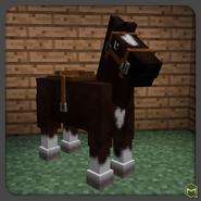 Dk Brown Horse-0