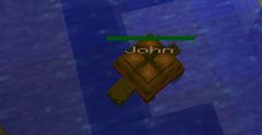 John the turtle