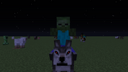 Zombie riding a wolf