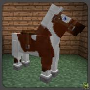 Piebald Horse-0