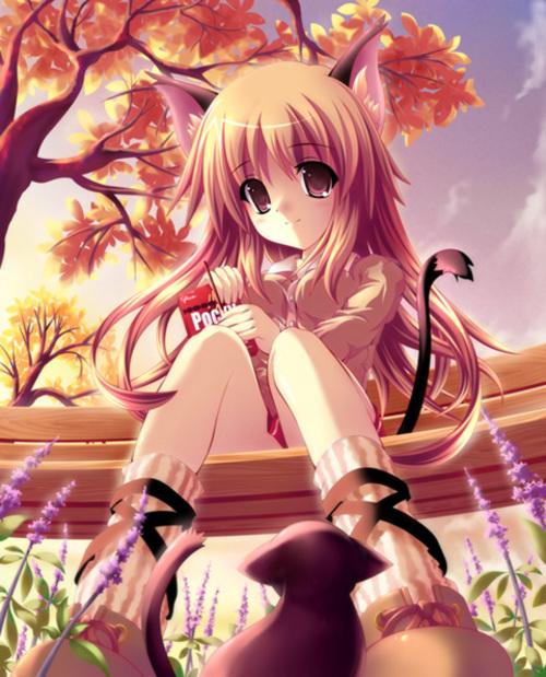 image anime catgirl large msg 116223818958 jpg modern