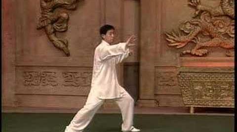 Chen Taijiquan - Laojia Yi Lu (part 2)