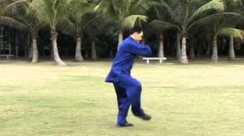 16 Form - Chen stil taijiquan (Huang Kang Hui)