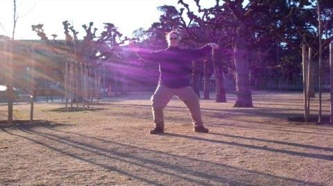 Wu Style Tai Chi short form