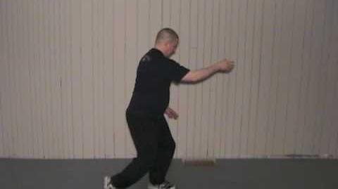 24 Form Tai Chi, Lesson 7, Play Guitar or Play the Lute