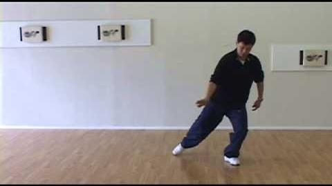 Yang Family Tai Chi high pat on horse, separation kicks
