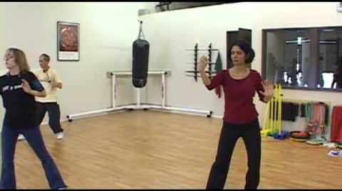 Yang Family Tai Chi practice left heel kick to parry block and punch
