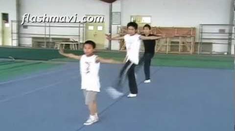 Li He Wushu Kick