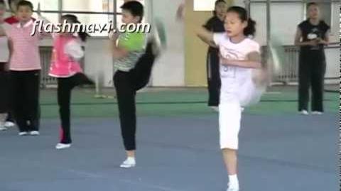 Side Stretchkick - Class Practice