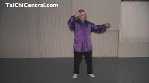 24 Form Tai Chi - Lesson 22 - Fair Maiden Weave the Shuttles