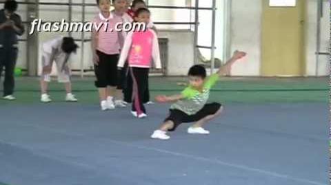 Wushu Class - Qian Sao Training