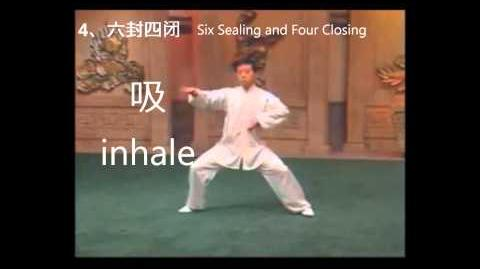Chen Tai Chi Inhale Exhale demo steps 1 to 5