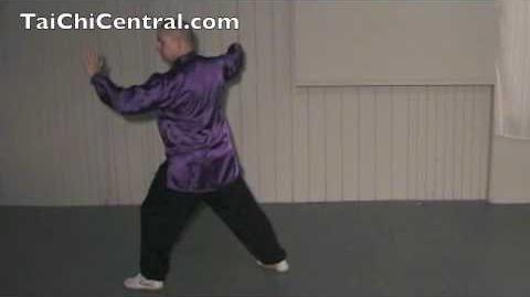 24 Form Tai Chi - Lesson 16 - Kick with Right Heel