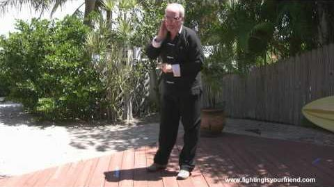 Play the Lute & Lifting Hands - Martial Tai Chi Applications