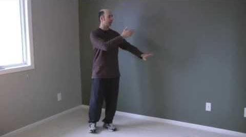 Beginner Tai Chi Clips 5. wave hands like clouds