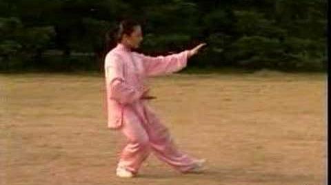 Tai chi yang 16 forms
