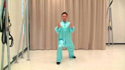 Tai Chi 13 Posture Front Demonstration - 太极十三势正面示范