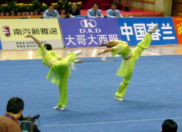File:10th all china games Jian pair 406 cropped.jpg