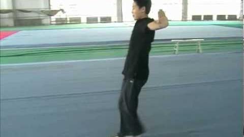 Wushu Front Stretchkick - Zheng Ti Video.flv اساسيات الكونج فو