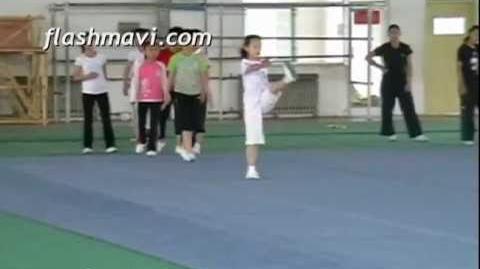 Kung Fu - Heel Palm Kick - Training in Class