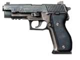 MSG 33
