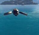 Hover drone
